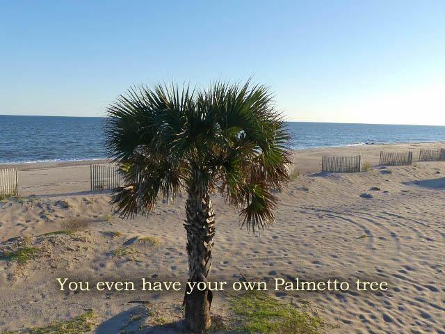 Edisto Beach Homes For Sale - 708 Palmetto, Edisto Island, SC - 66