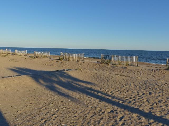 Edisto Beach Homes For Sale - 708 Palmetto, Edisto Island, SC - 19