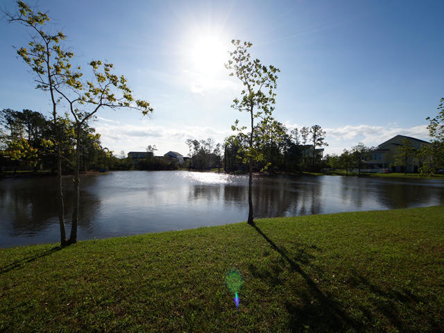 Rivertowne On The Wando Homes For Sale - 2013 Shields, Mount Pleasant, SC - 28