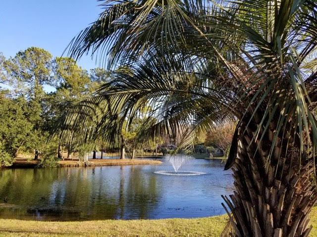 Island Bluff Homes For Sale - 886 Simpkins, Charleston, SC - 19