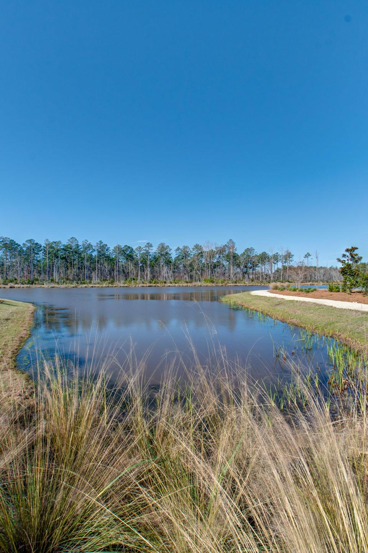 Carolina Park Homes For Sale - 1538 Watt Pond, Mount Pleasant, SC - 70