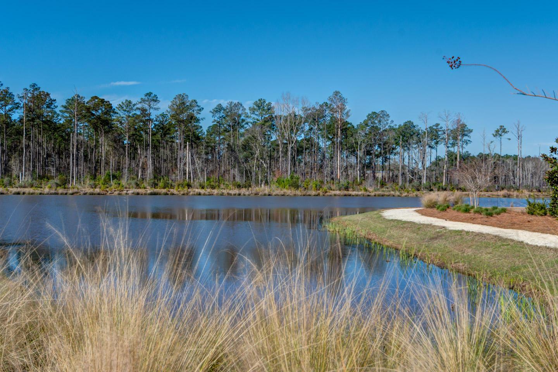 Carolina Park Homes For Sale - 1538 Watt Pond, Mount Pleasant, SC - 71