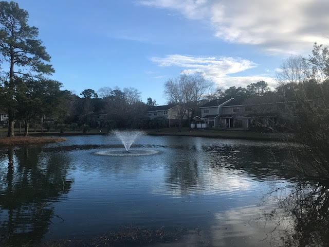 Island Bluff Homes For Sale - 886 Simpkins, Charleston, SC - 15