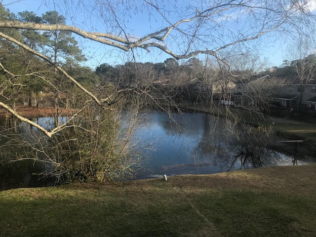 Island Bluff Homes For Sale - 886 Simpkins, Charleston, SC - 10