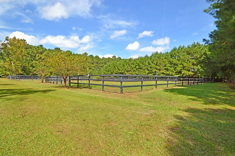 Polly Point Plantation Homes For Sale - 1389 Polly Point, Wadmalaw Island, SC - 7