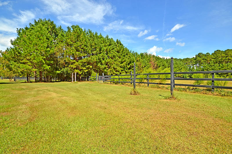 Polly Point Plantation Homes For Sale - 1389 Polly Point, Wadmalaw Island, SC - 16