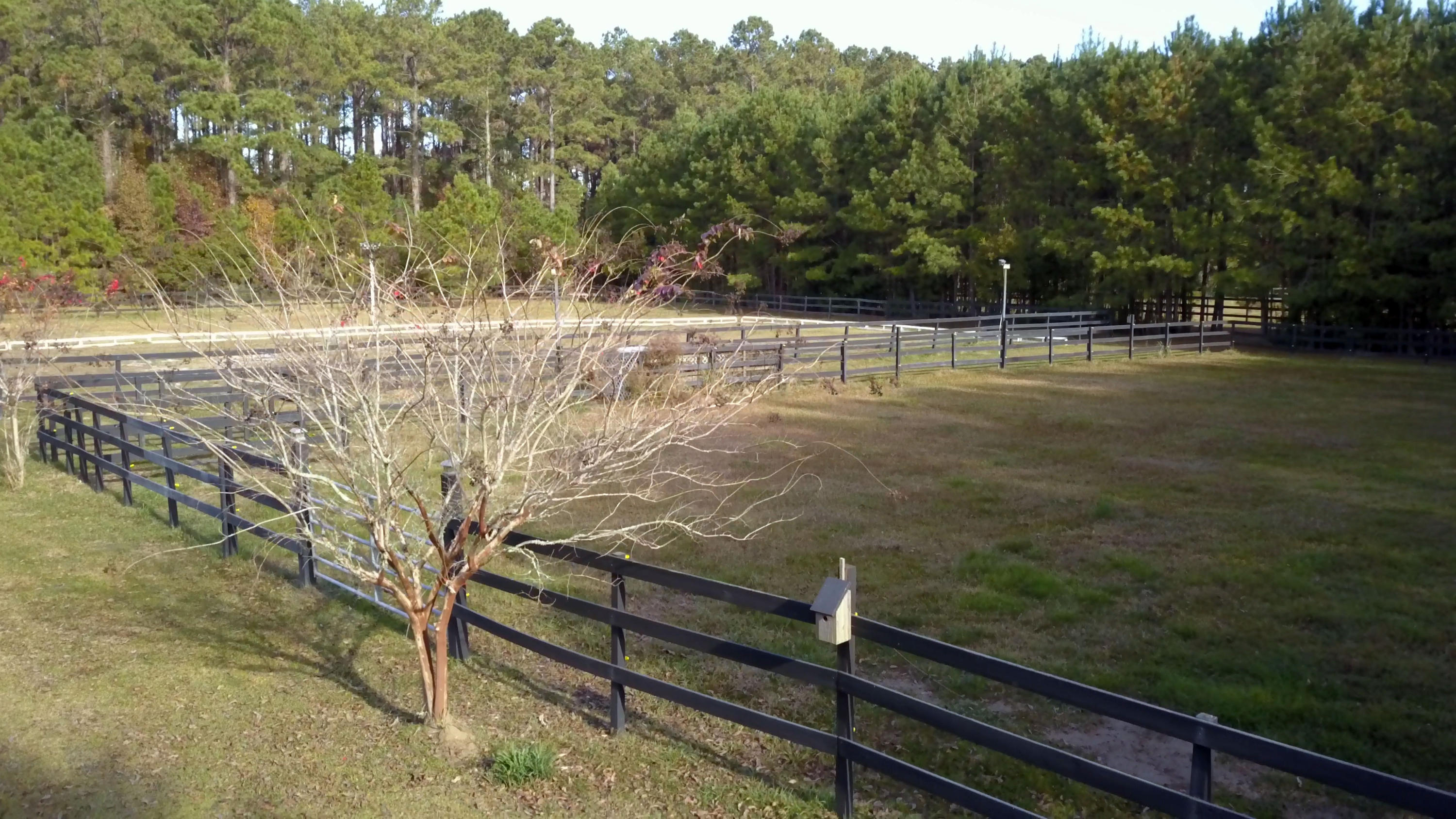 Polly Point Plantation Homes For Sale - 1389 Polly Point, Wadmalaw Island, SC - 73