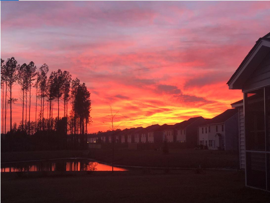 Cane Bay Plantation Homes For Sale - 718 Redbud, Summerville, SC - 1