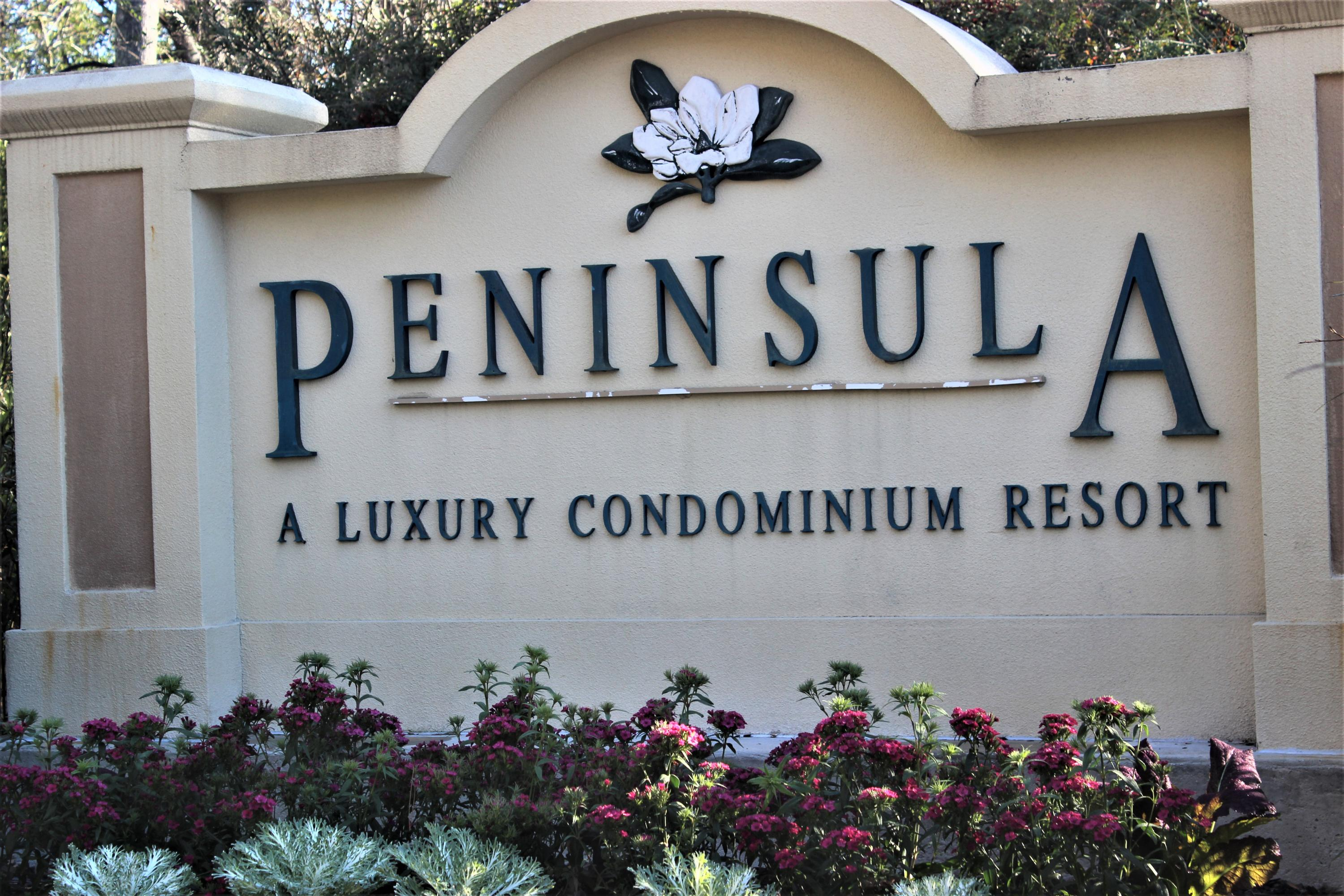 The Peninsula Condominiums Homes For Sale - 700 Daniel Ellis, Charleston, SC - 25