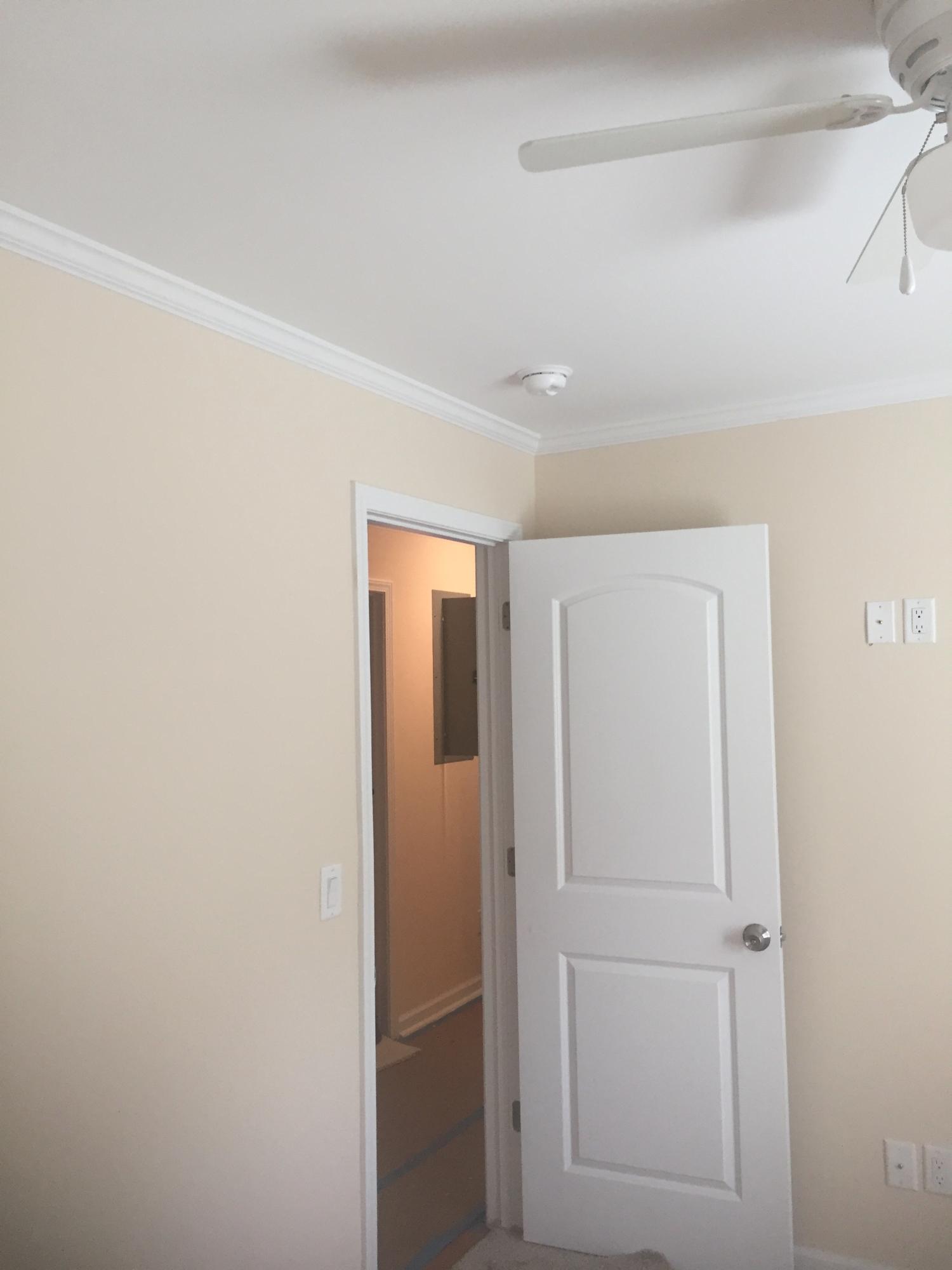 None Homes For Sale - 579 Dopson, Islandton, SC - 13