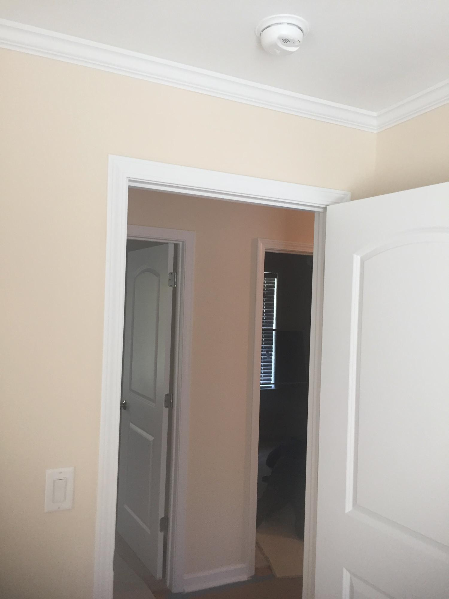 None Homes For Sale - 579 Dopson, Islandton, SC - 11