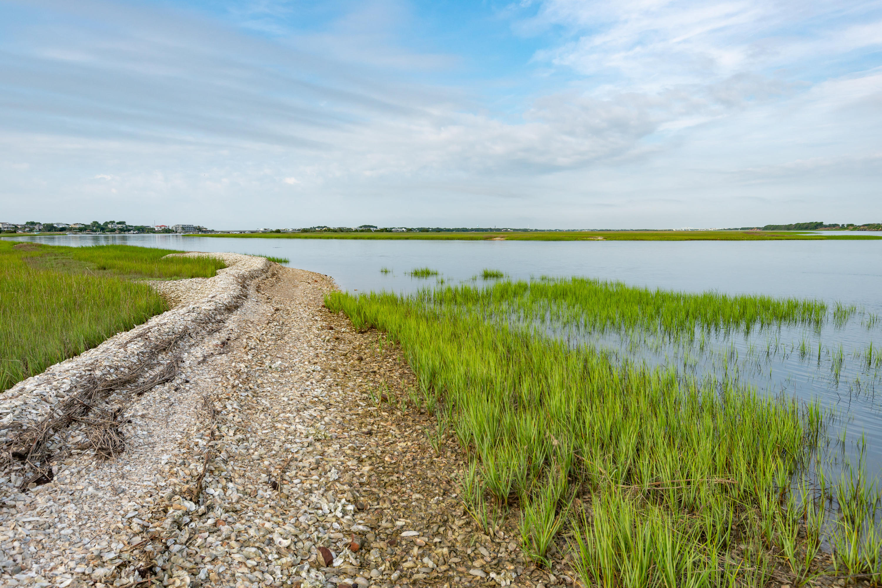 None Lots For Sale - 0 Little Goat Island, Isle of Palms, SC - 8