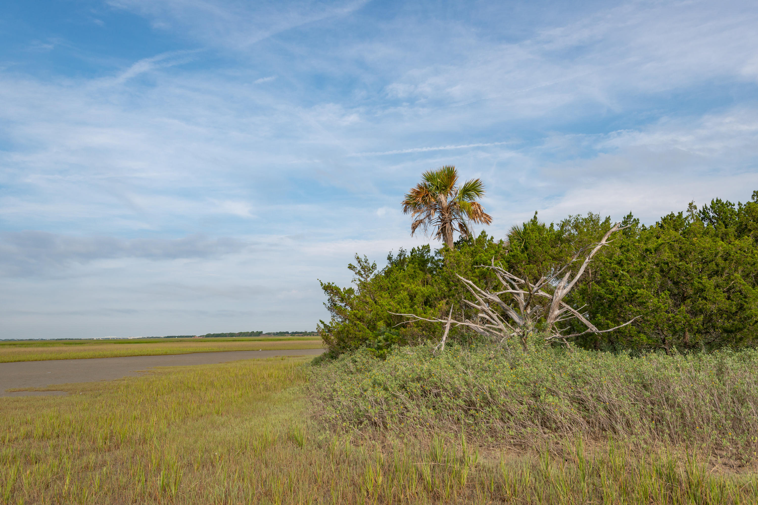 None Lots For Sale - 0 Little Goat Island, Isle of Palms, SC - 7