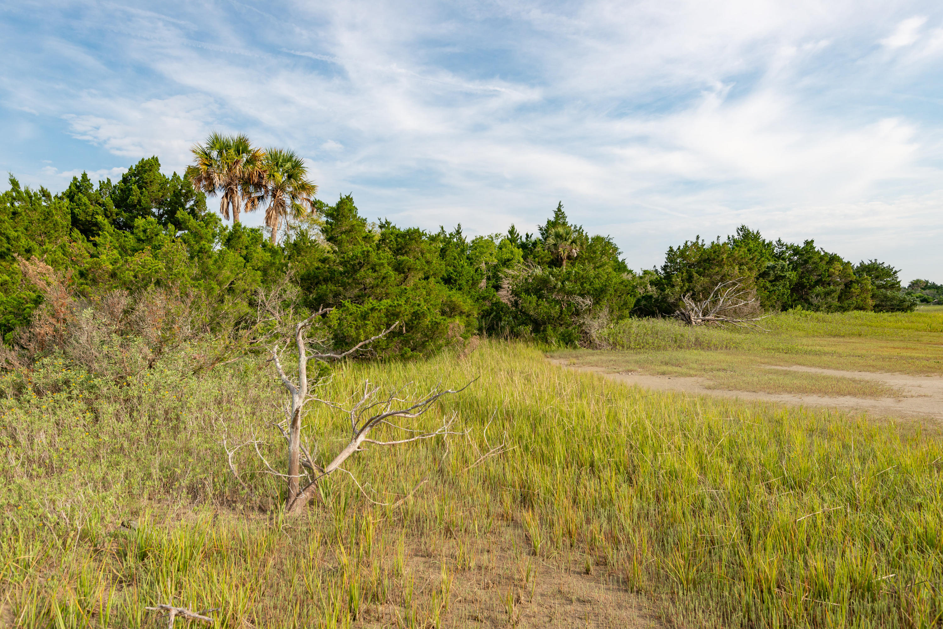 None Lots For Sale - 0 Little Goat Island, Isle of Palms, SC - 6