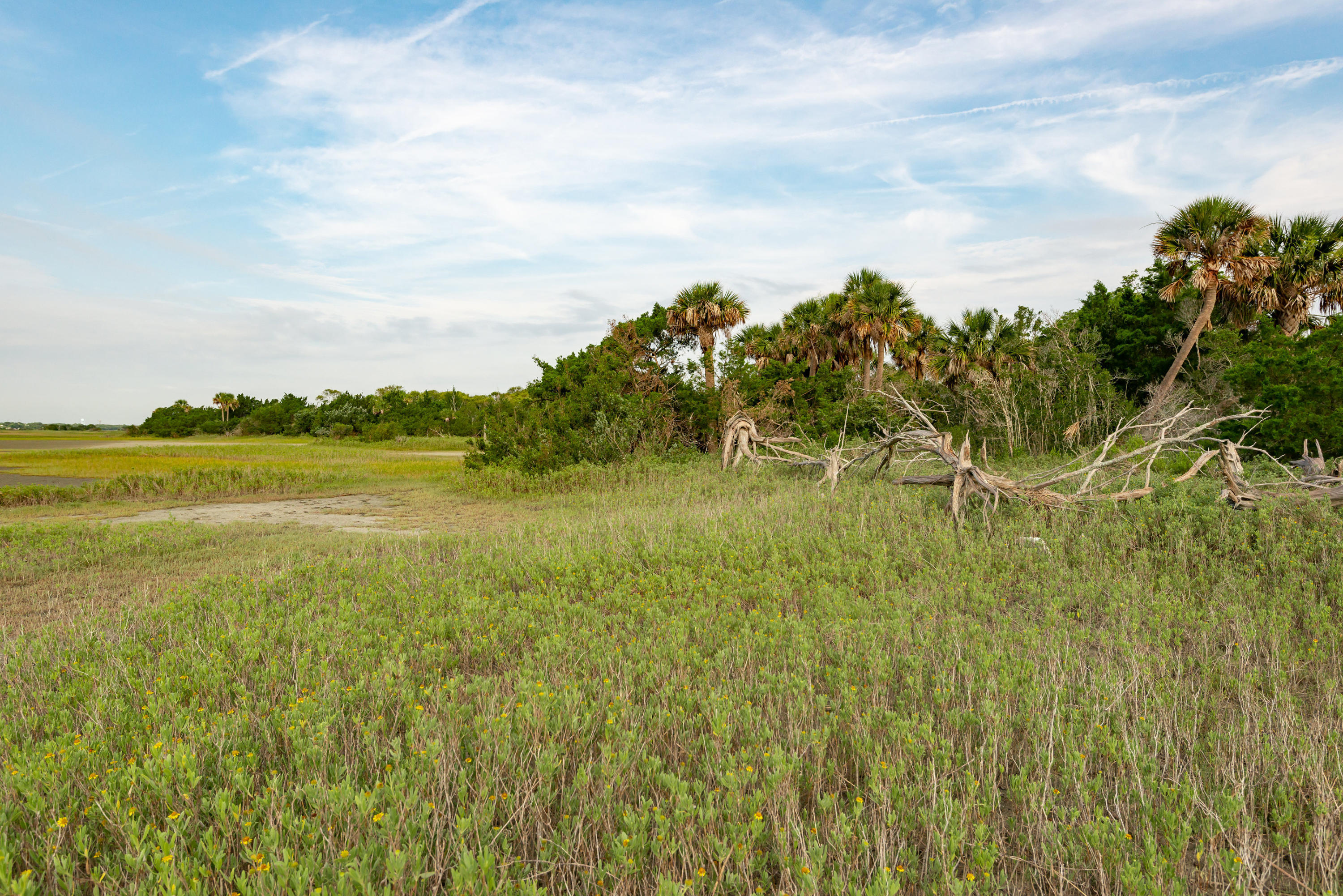 None Lots For Sale - 0 Little Goat Island, Isle of Palms, SC - 4
