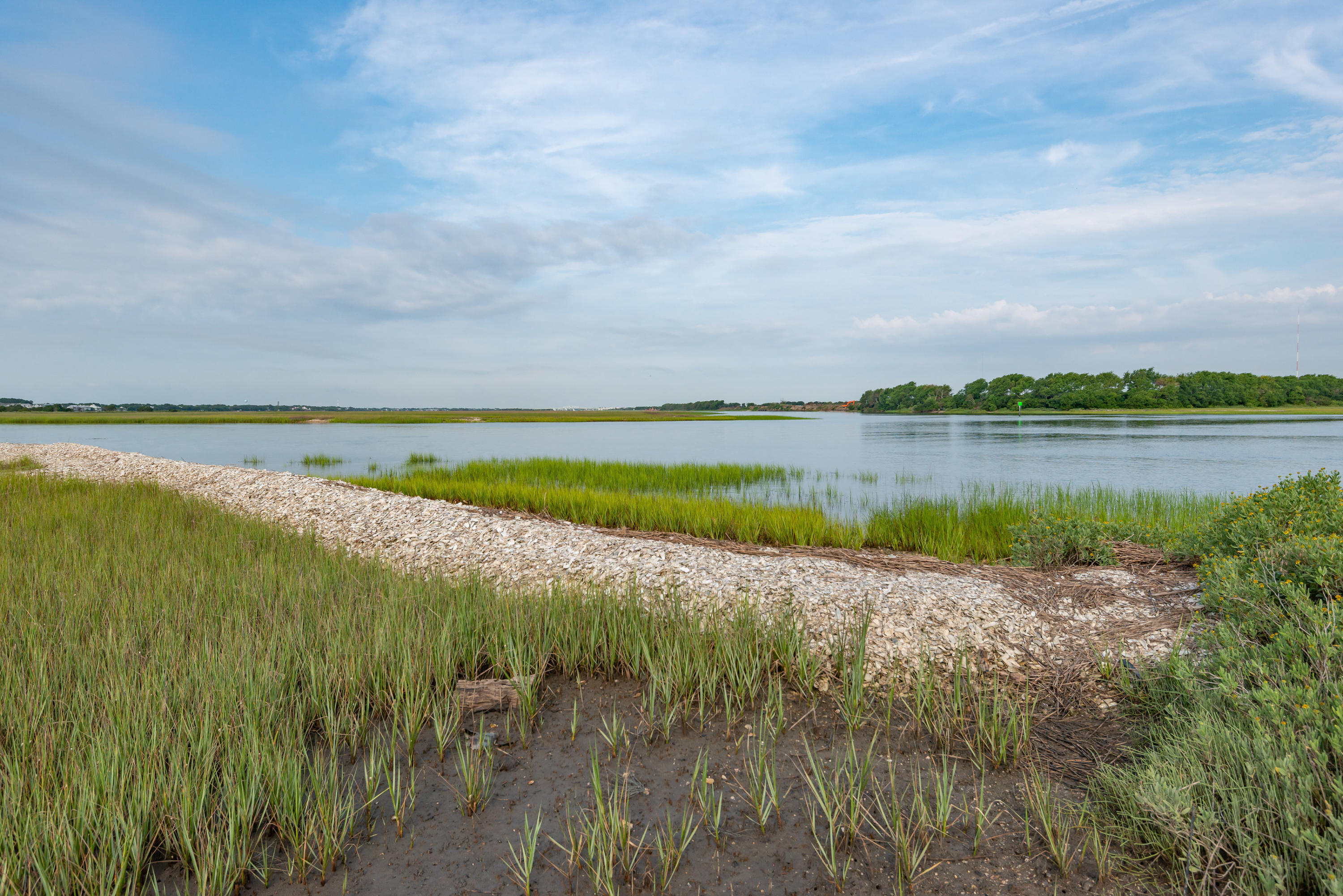 None Lots For Sale - 0 Little Goat Island, Isle of Palms, SC - 1