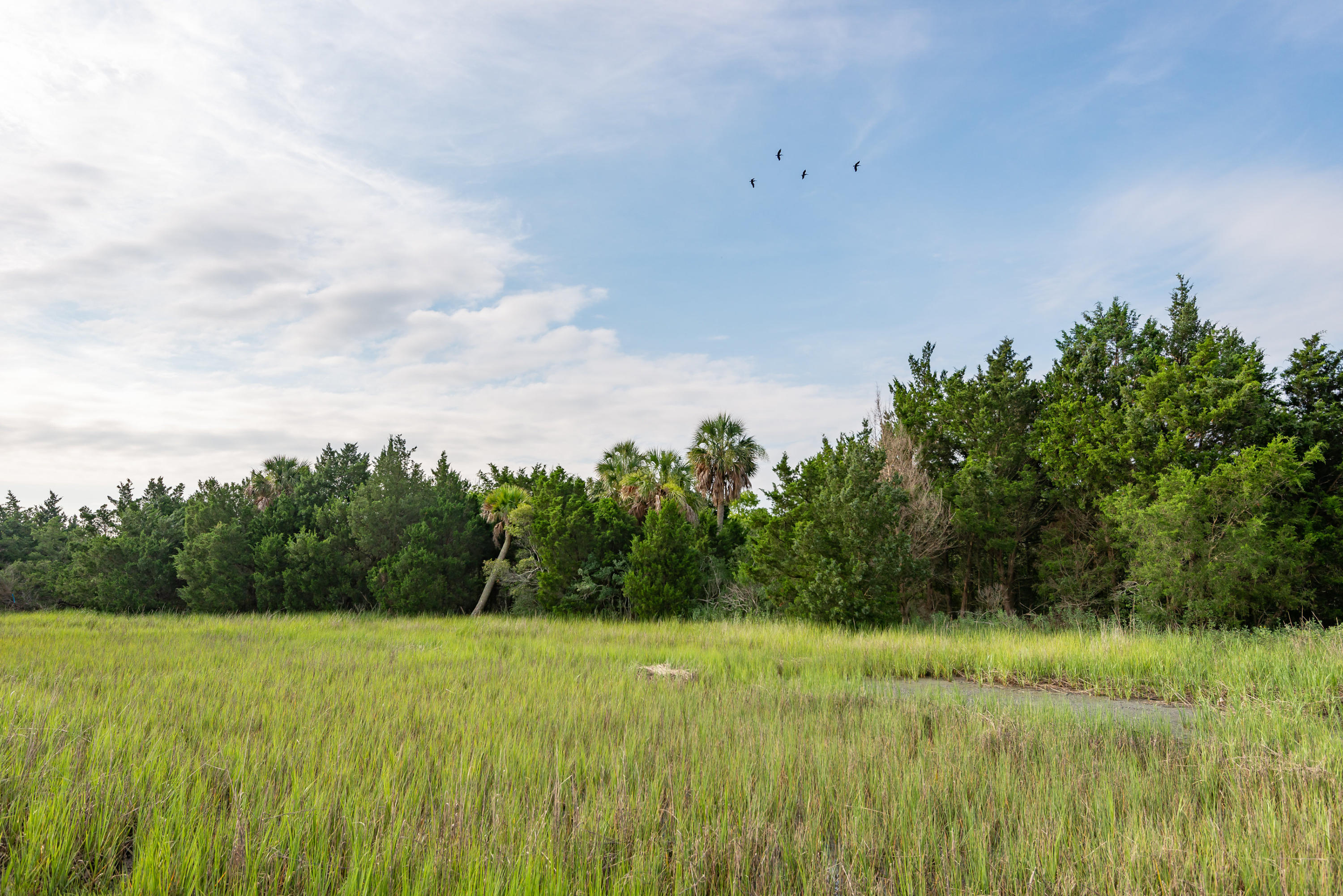 None Lots For Sale - 0 Little Goat Island, Isle of Palms, SC - 2