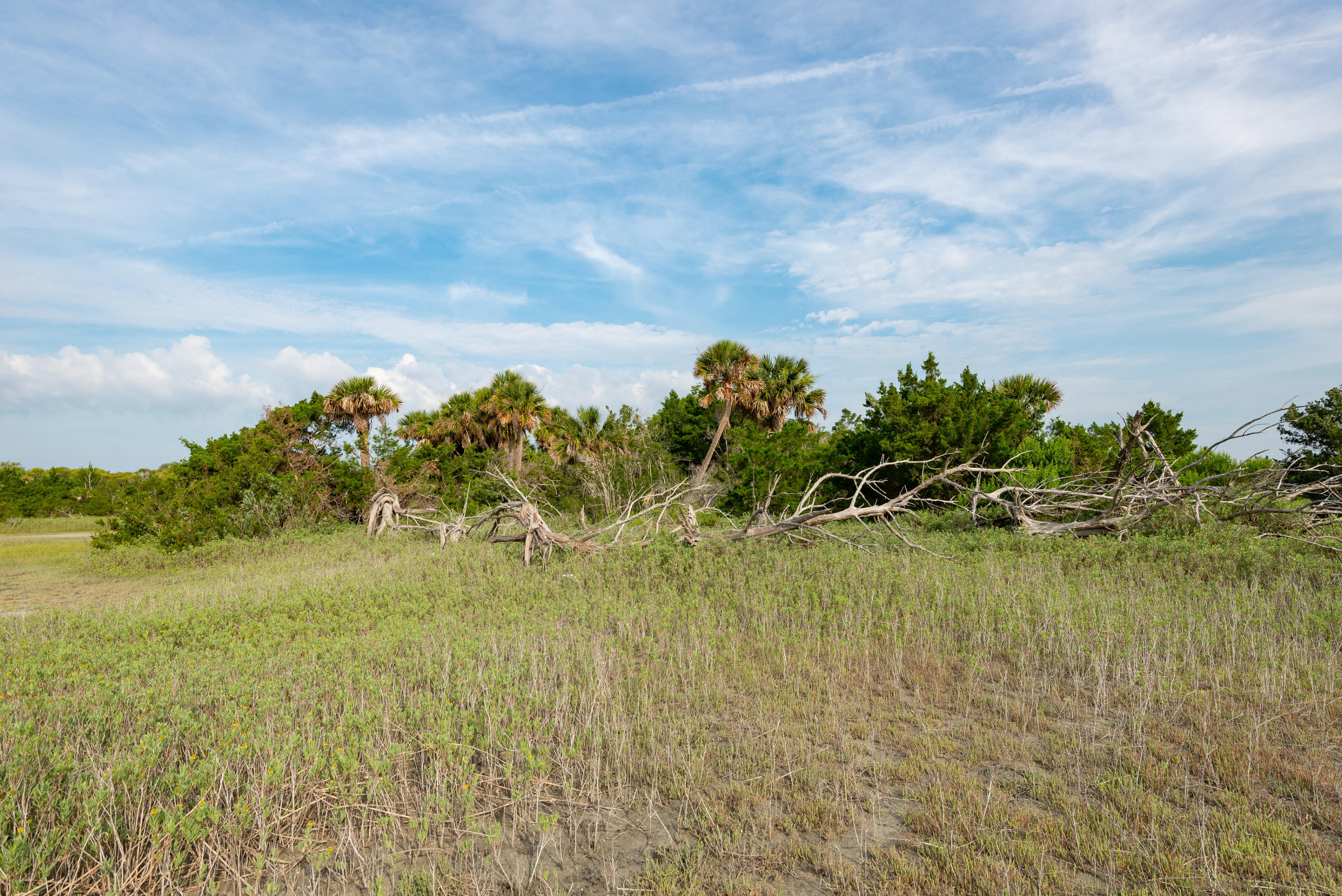 None Lots For Sale - 0 Little Goat Island, Isle of Palms, SC - 38
