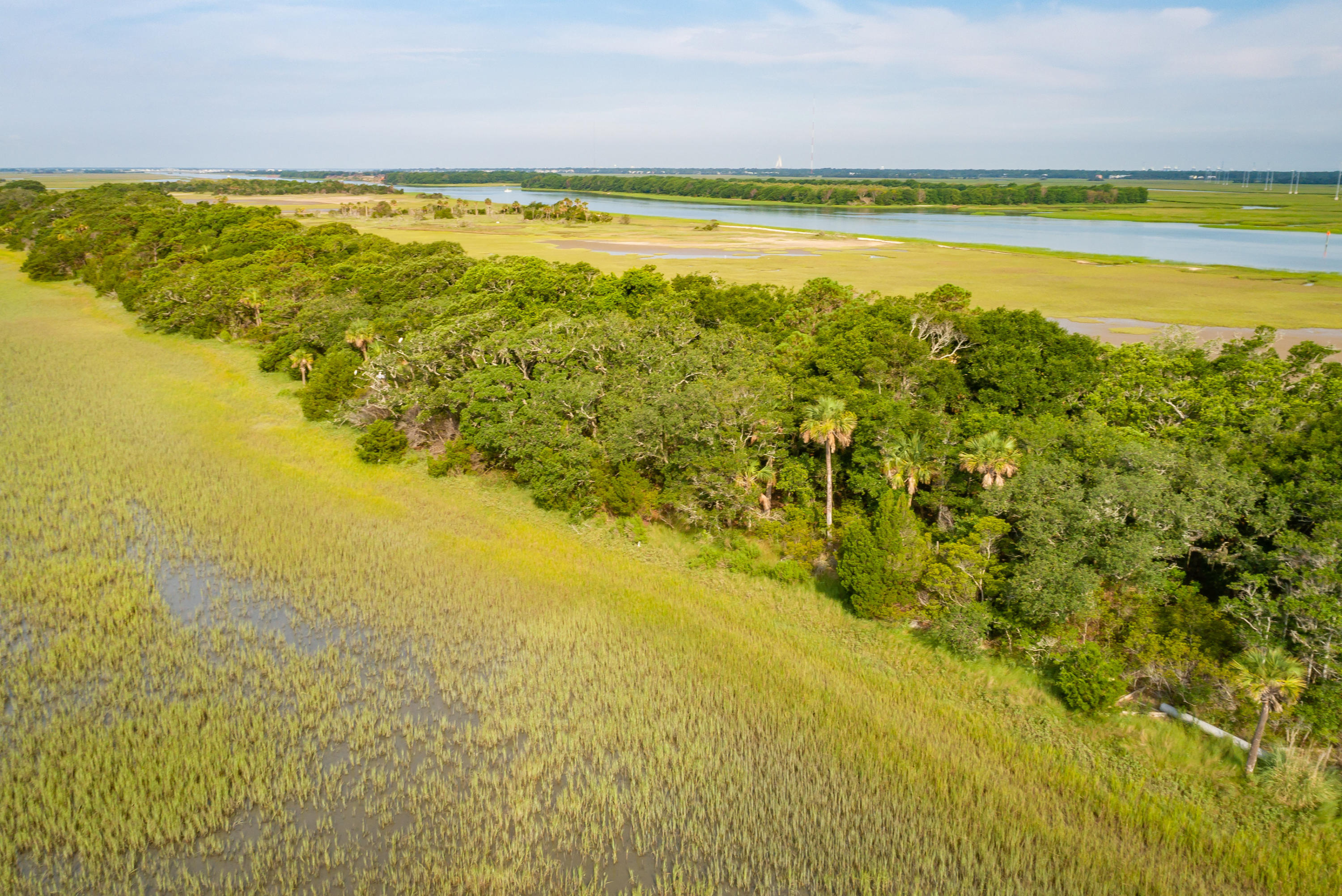 None Lots For Sale - 0 Little Goat Island, Isle of Palms, SC - 34