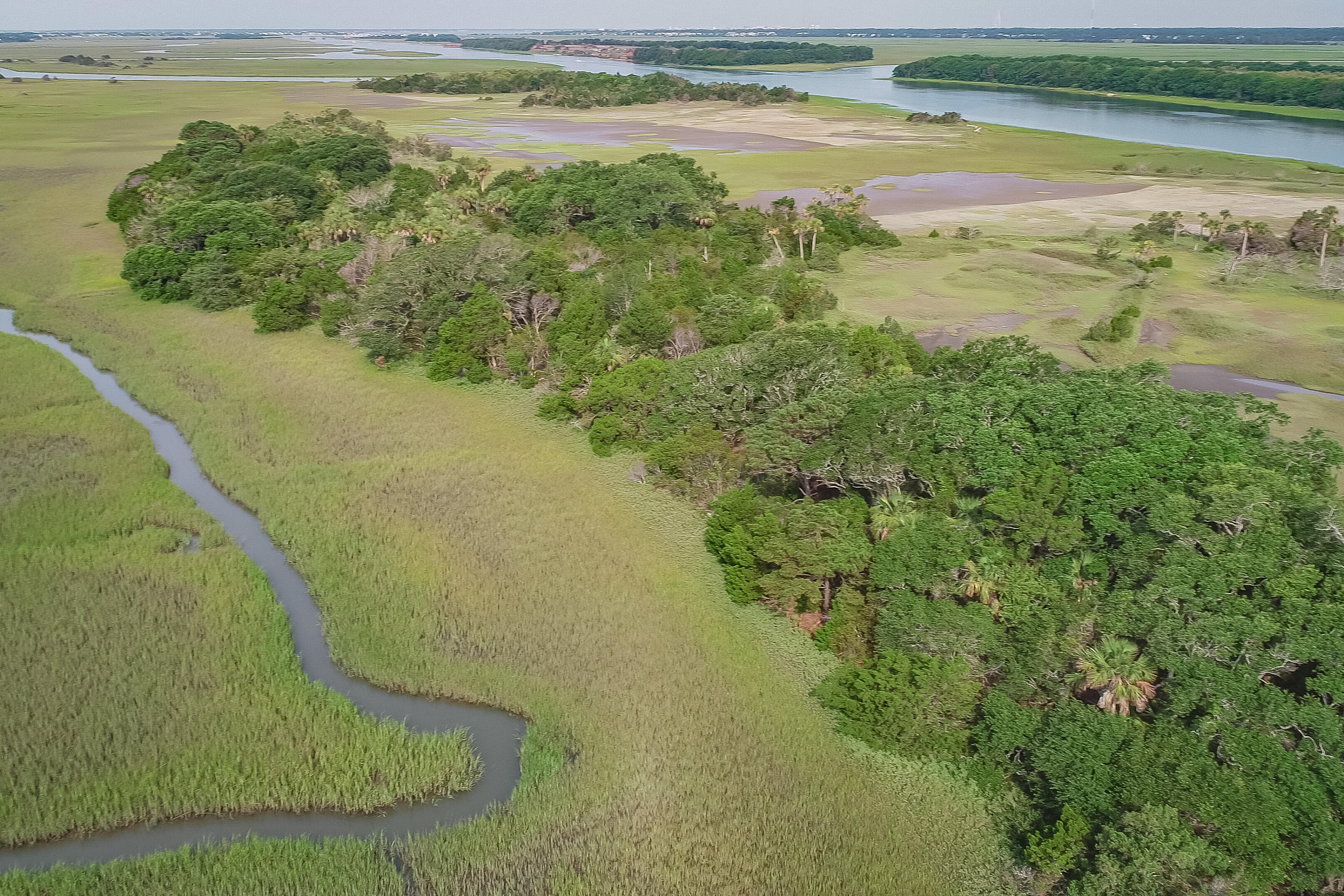 None Lots For Sale - 0 Little Goat Island, Isle of Palms, SC - 31