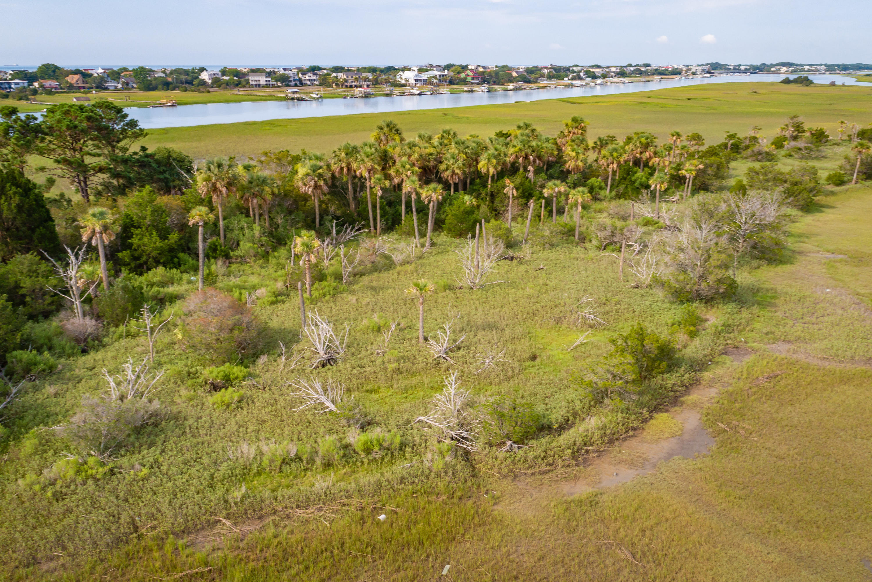 None Lots For Sale - 0 Little Goat Island, Isle of Palms, SC - 29