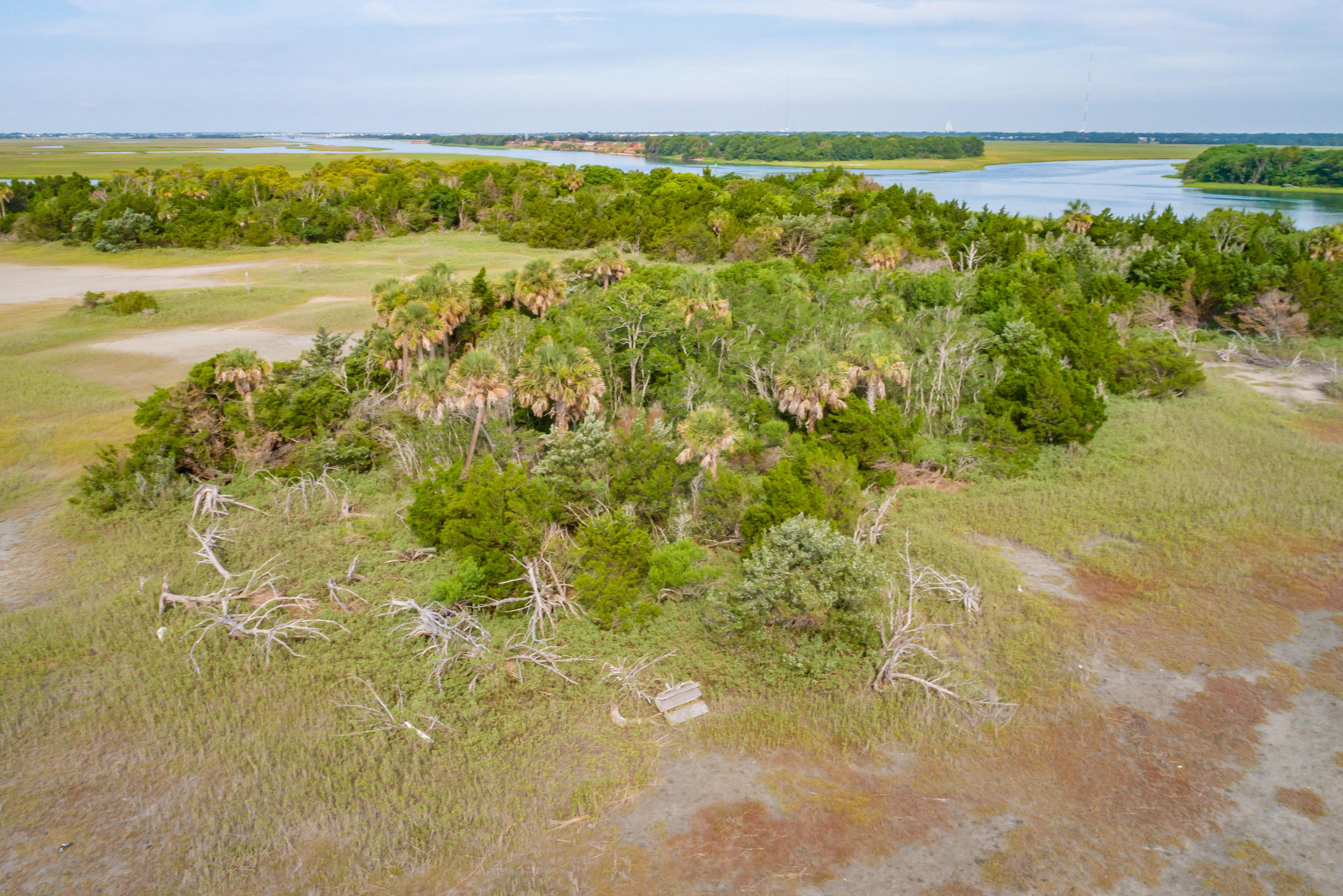 None Lots For Sale - 0 Little Goat Island, Isle of Palms, SC - 28