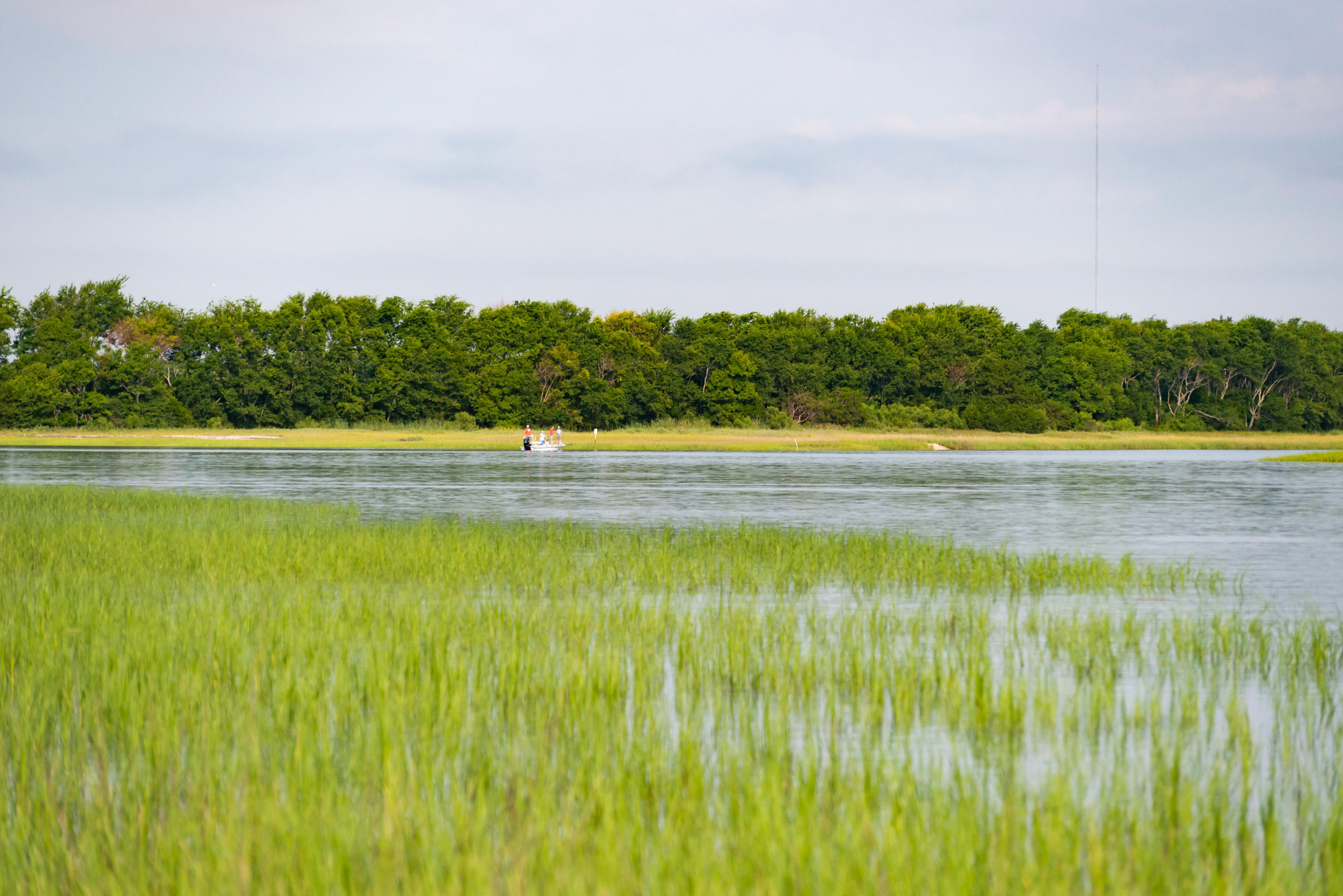 None Lots For Sale - 0 Little Goat Island, Isle of Palms, SC - 21