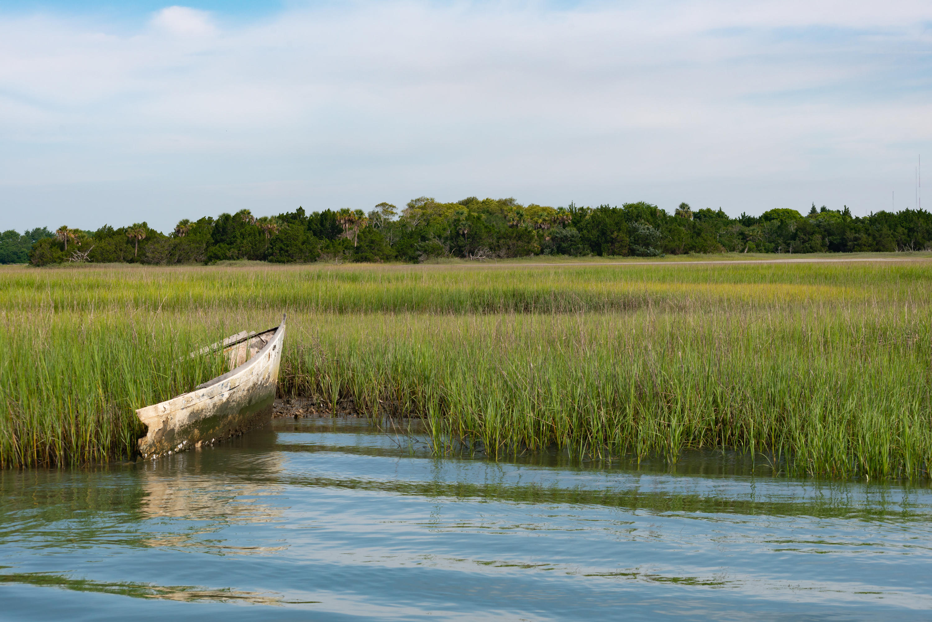 None Lots For Sale - 0 Little Goat Island, Isle of Palms, SC - 15