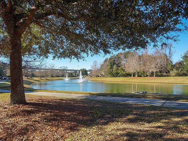 Daniel Island Park Homes For Sale - 130 Fairbanks Oak, Charleston, SC - 0