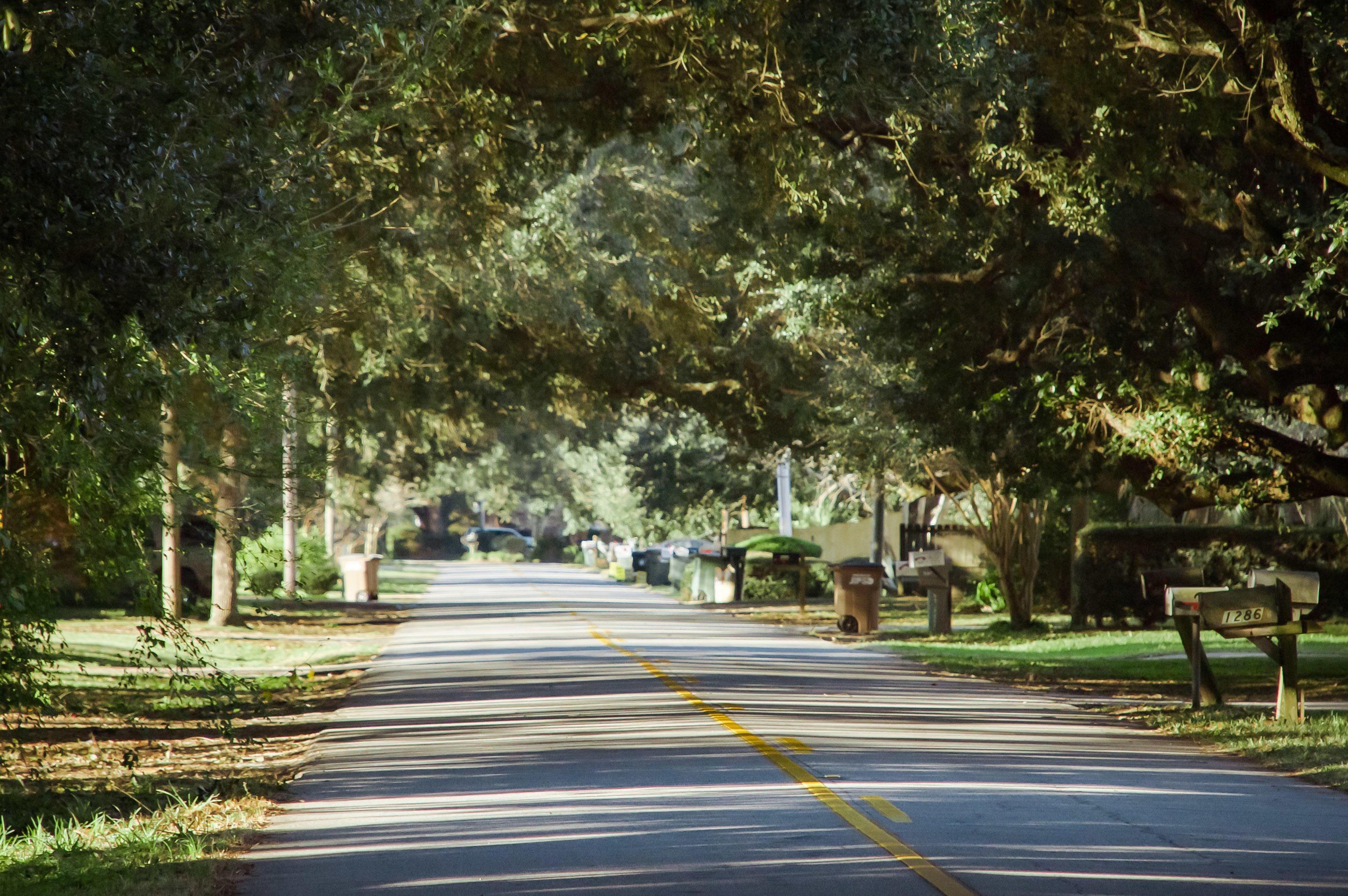 Secessionville Acres Homes For Sale - 1282 Fort Lamar, Charleston, SC - 2