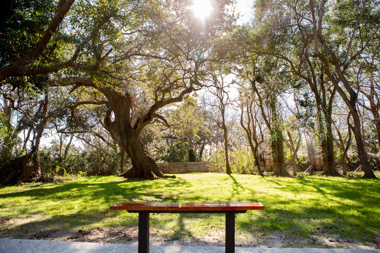Magnolia Homes For Sale - 5 Paula, Charleston, SC - 23