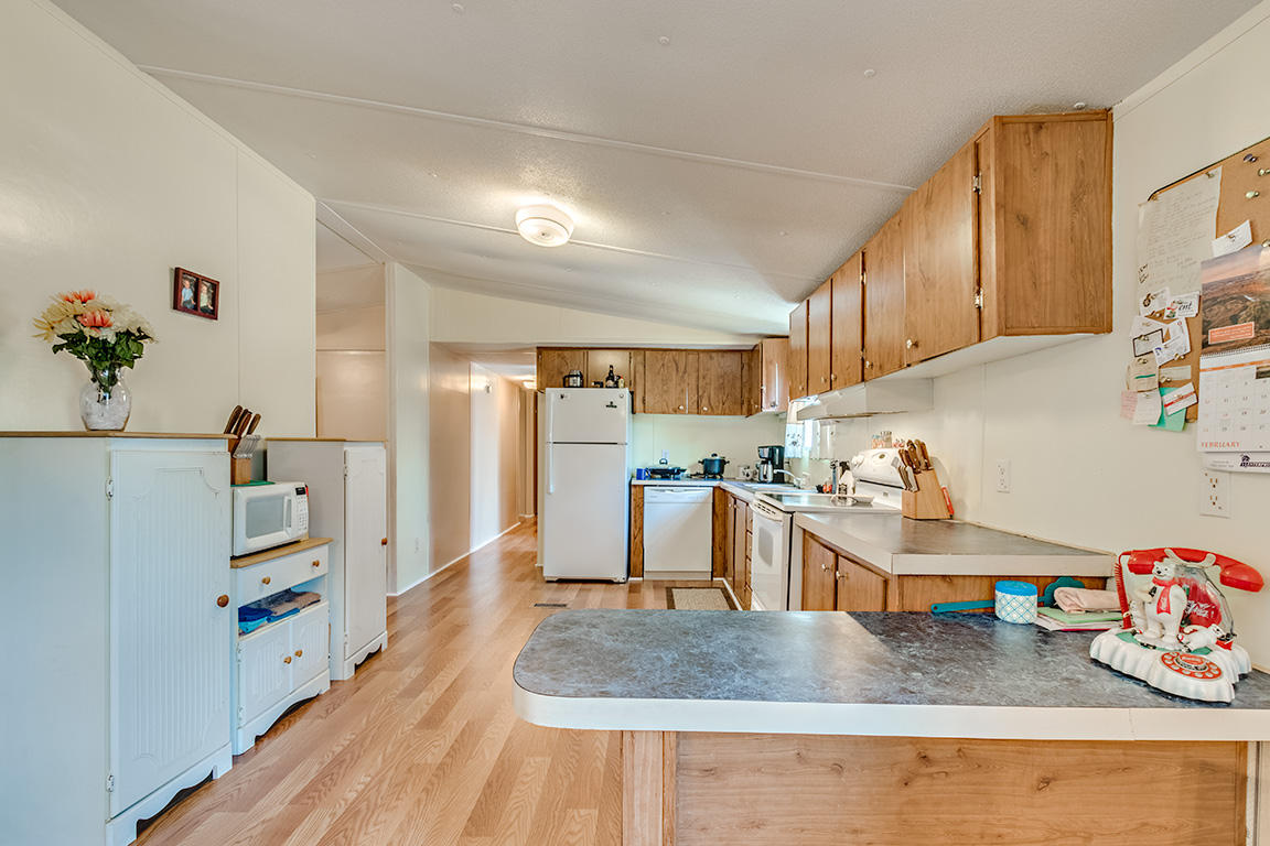 None Homes For Sale - 7340 Jacksonboro, Round O, SC - 10