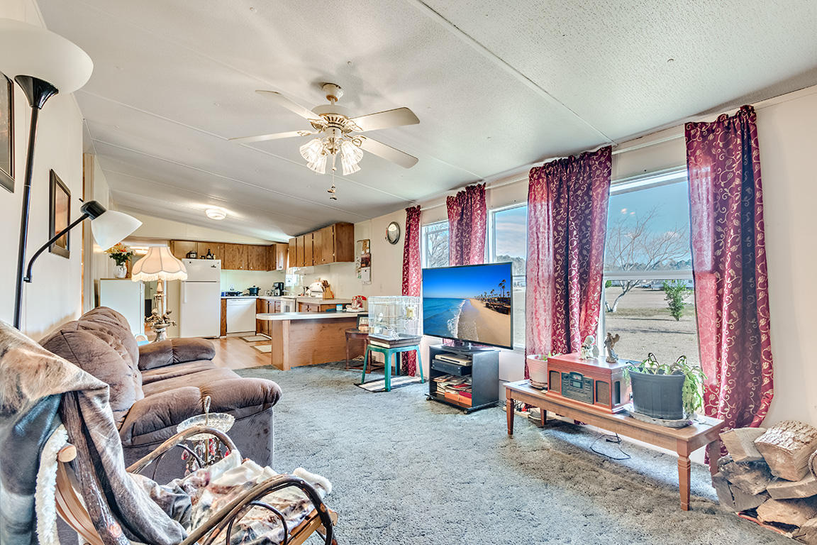 None Homes For Sale - 7340 Jacksonboro, Round O, SC - 12