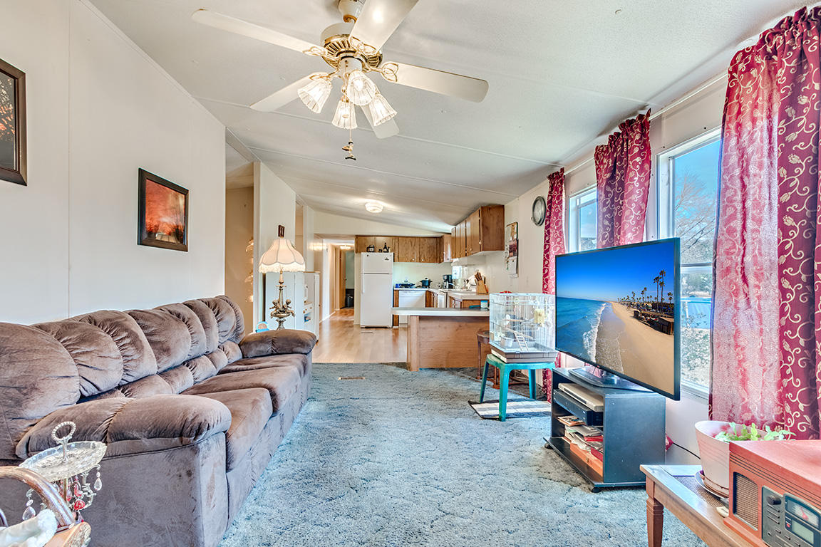 None Homes For Sale - 7340 Jacksonboro, Round O, SC - 13