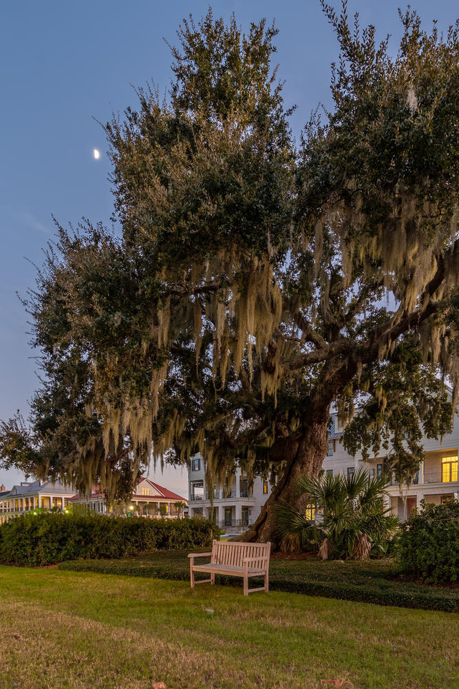 Daniel Island Homes For Sale - 200 River Landing, Charleston, SC - 34