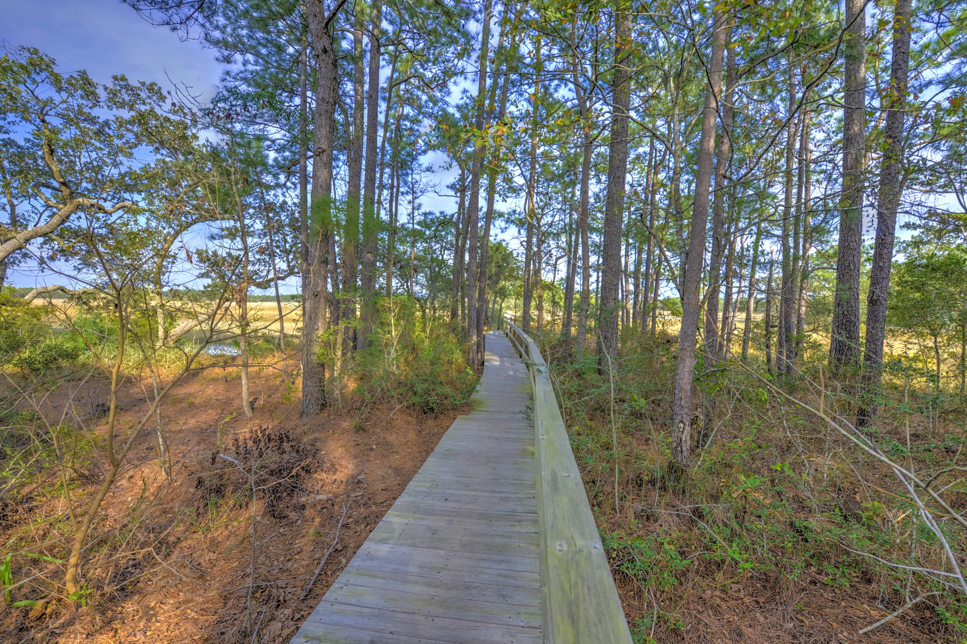 Etiwan Pointe Homes For Sale - 105 Winding Creek, Mount Pleasant, SC - 17