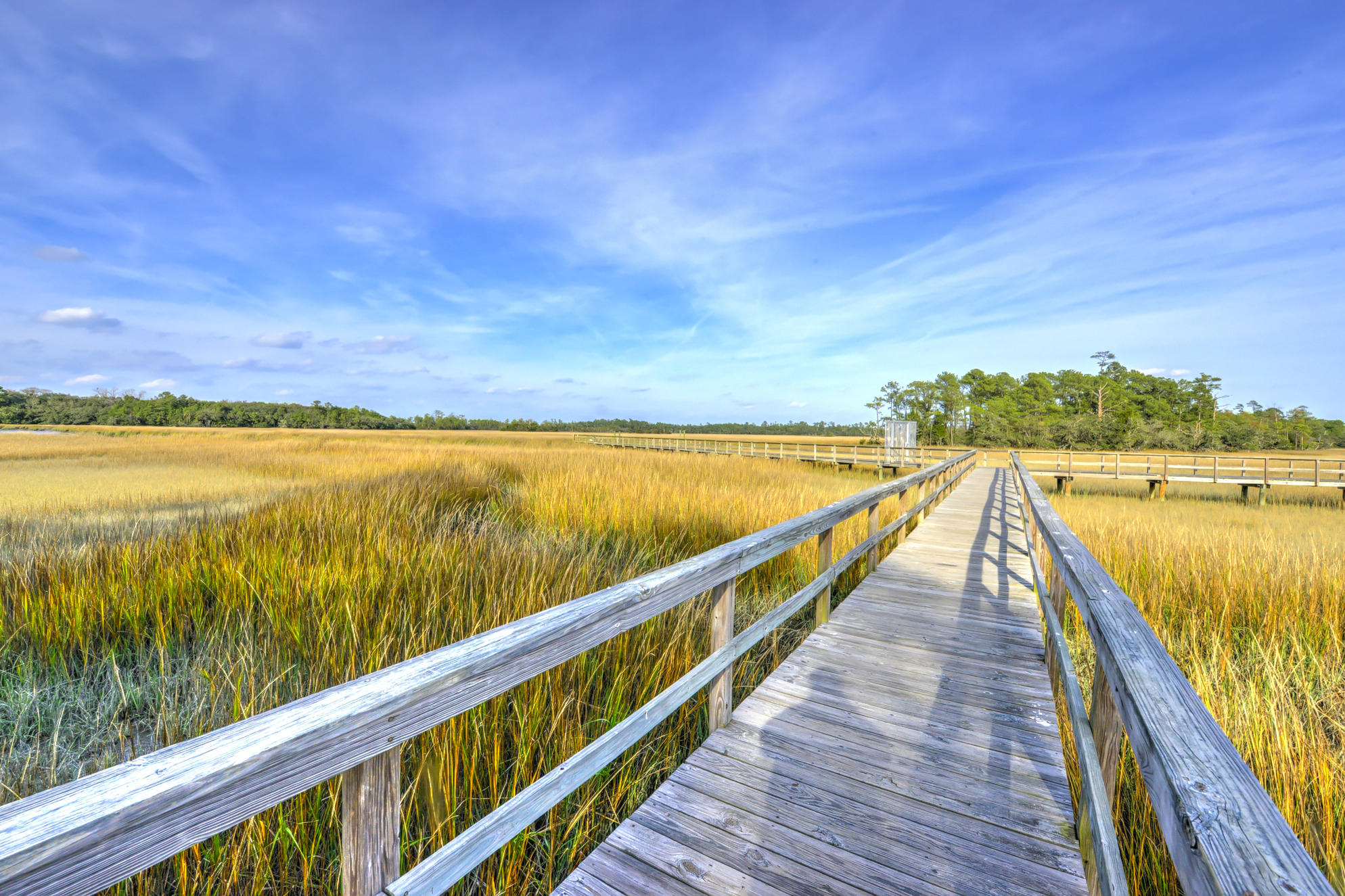 Etiwan Pointe Homes For Sale - 105 Winding Creek, Mount Pleasant, SC - 18