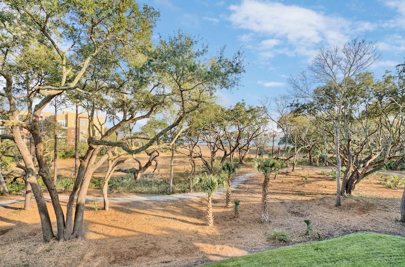 Daniel Island Park Homes For Sale - 124 Fairbanks Oak, Charleston, SC - 21