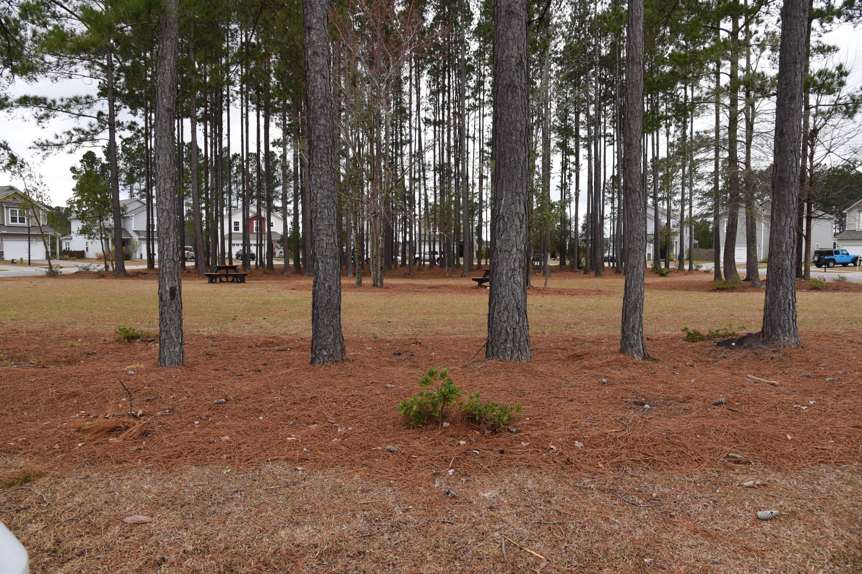 Cane Bay Plantation Homes For Sale - 156 Brookhaven, Summerville, SC - 14