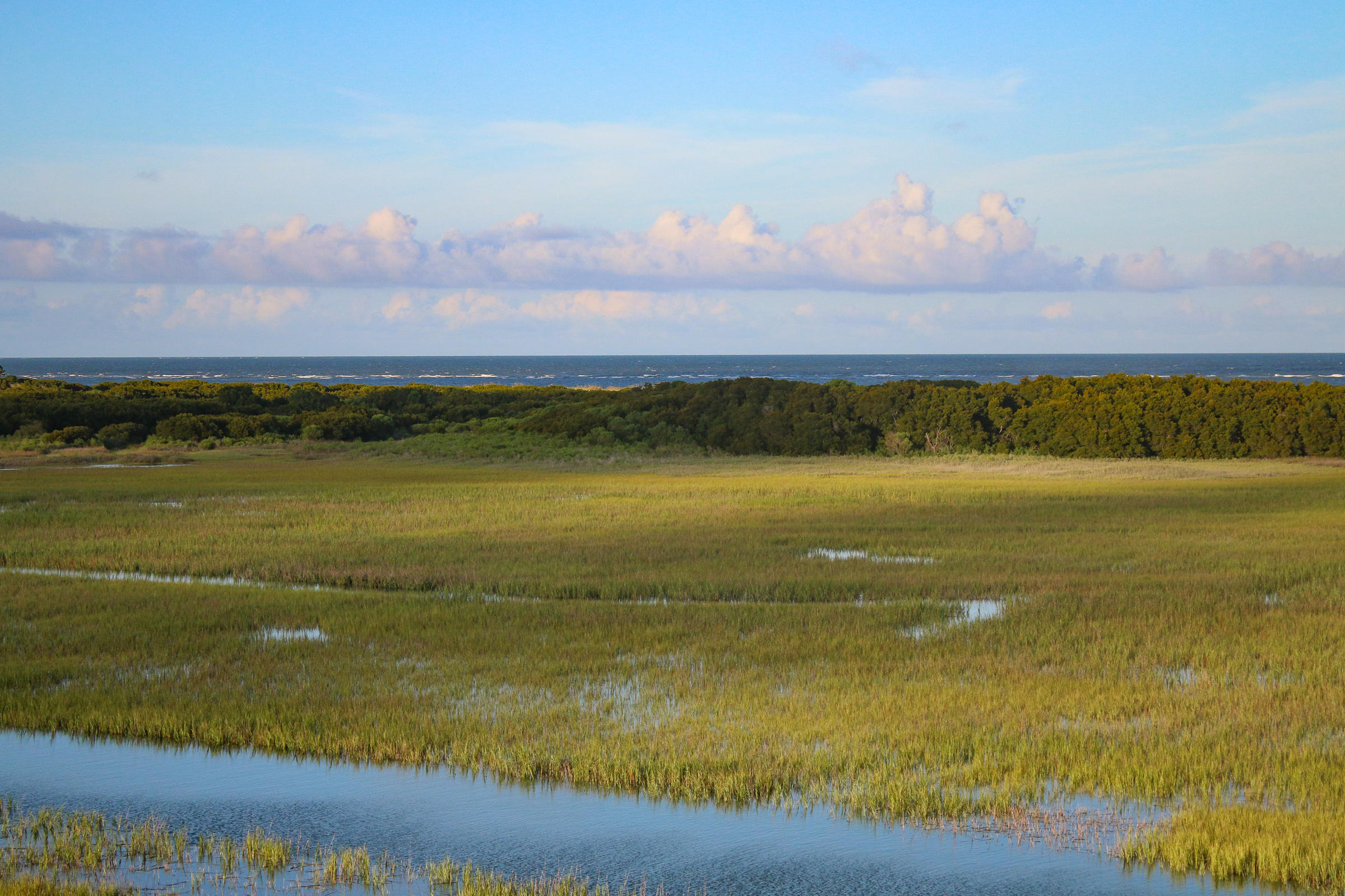 Dewees Island Lots For Sale - 429 Pelican Flight Dr Lot 45, Dewees Island, SC - 9