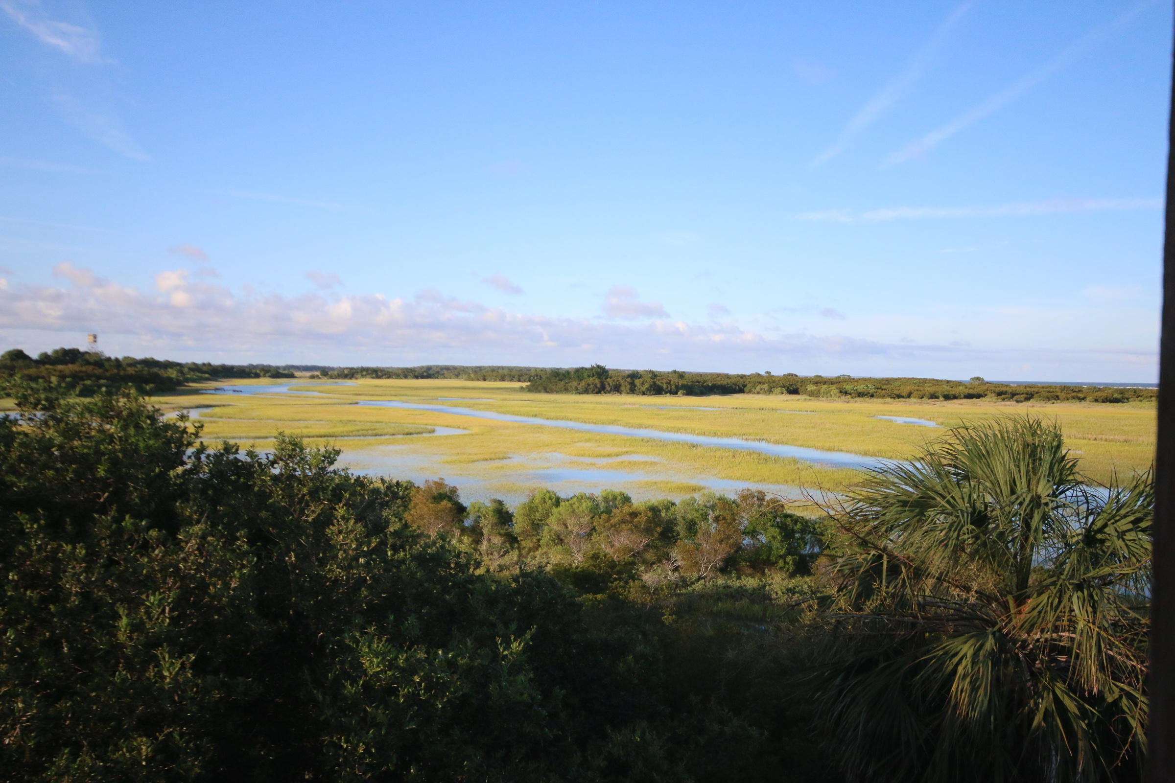 Dewees Island Lots For Sale - 429 Pelican Flight Dr Lot 45, Dewees Island, SC - 5