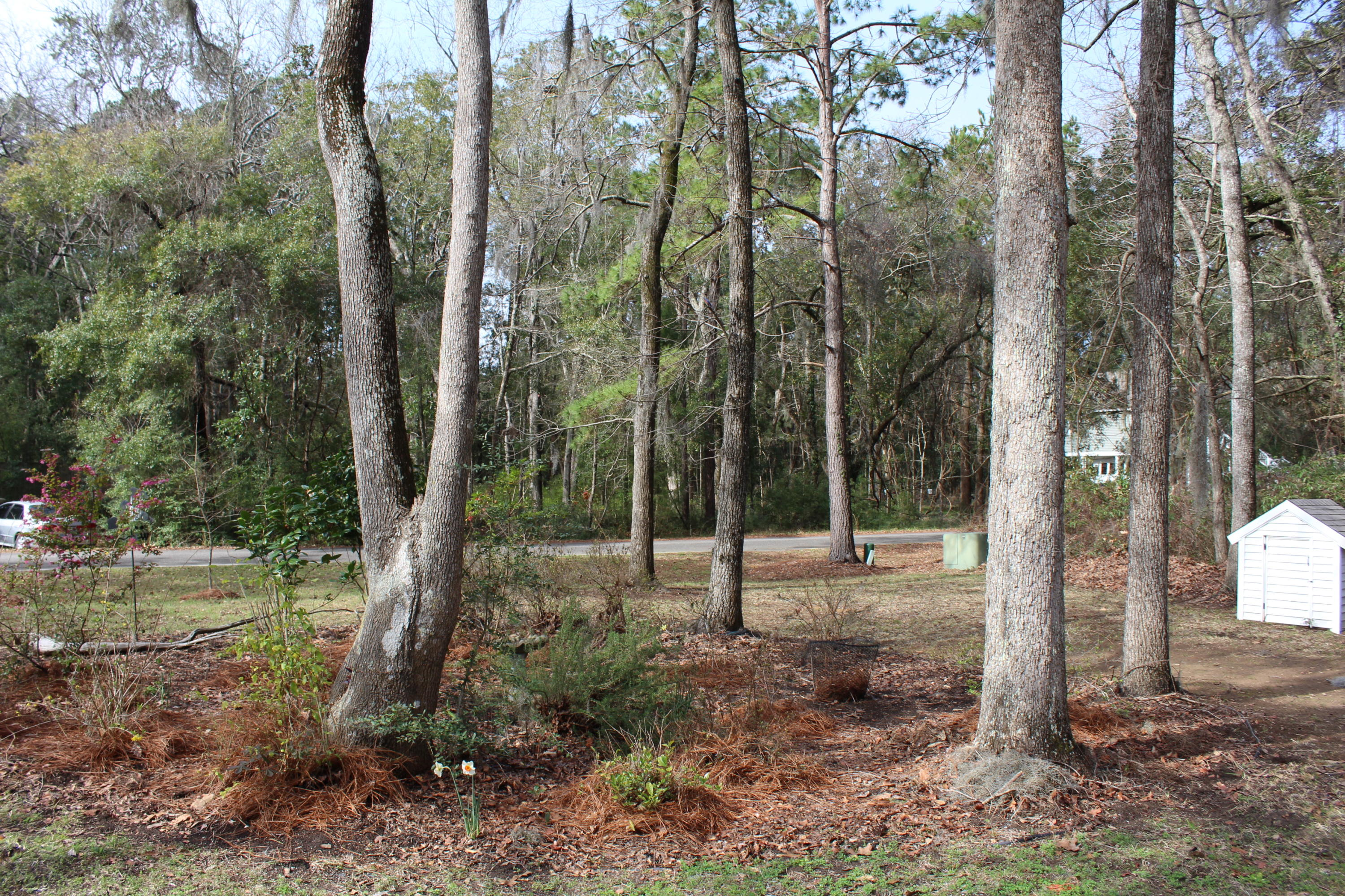 Crawford Place Homes For Sale - 882 Claussen House, Edisto Island, SC - 33
