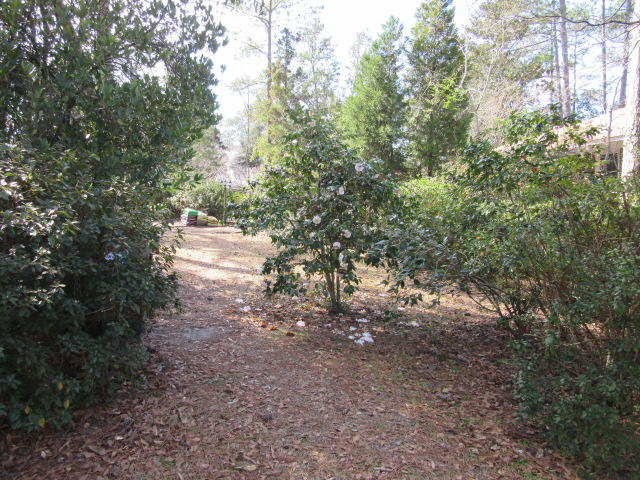 Historic District Homes For Sale - 113 6th South, Summerville, SC - 34