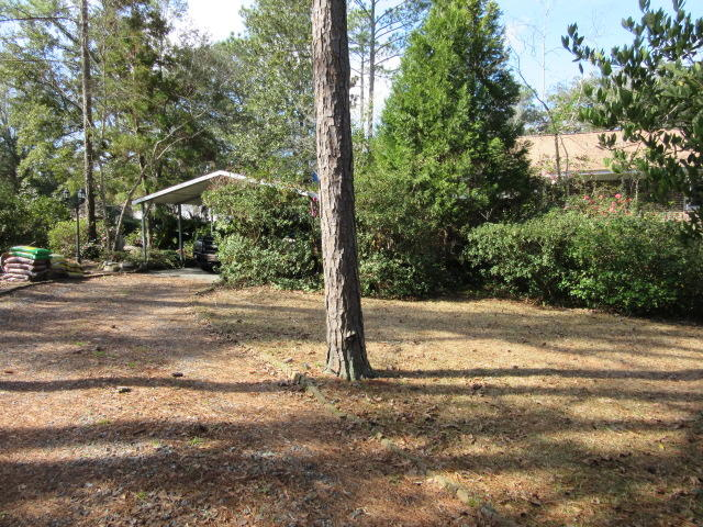 Historic District Homes For Sale - 113 6th South, Summerville, SC - 33