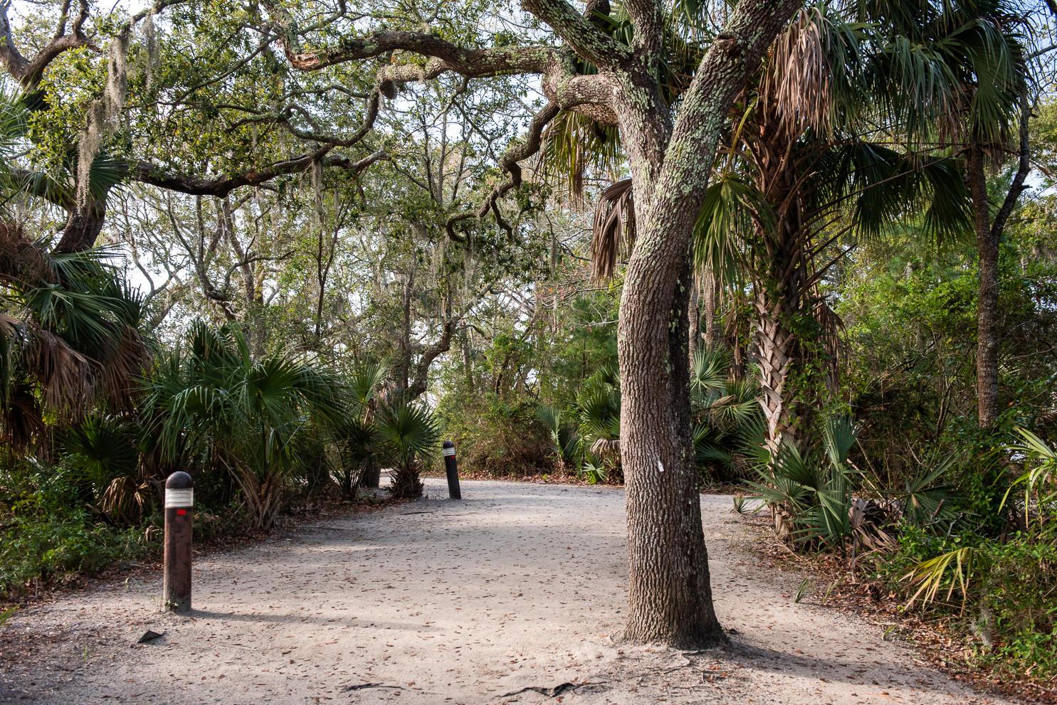 Daniel Landing Condos Homes For Sale - 130 River Landing, Charleston, SC - 10