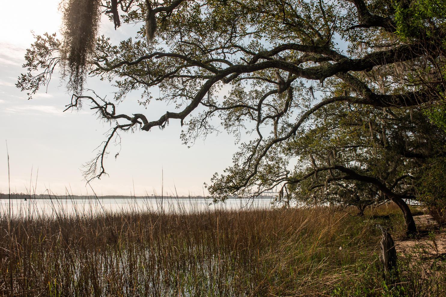 Daniel Landing Condos Homes For Sale - 130 River Landing, Charleston, SC - 7