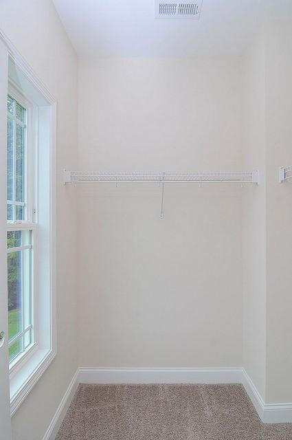 Cooper Estates Homes For Sale - 117 Lakelyn, Moncks Corner, SC - 30