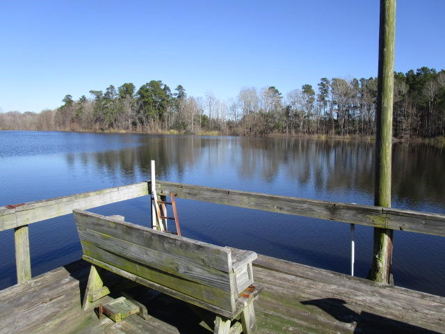 Gin Pond Homes For Sale - 1401 Mccoy, Summerton, SC - 16