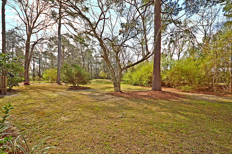 Crowfield Plantation Homes For Sale - 107 Mallock, Goose Creek, SC - 27