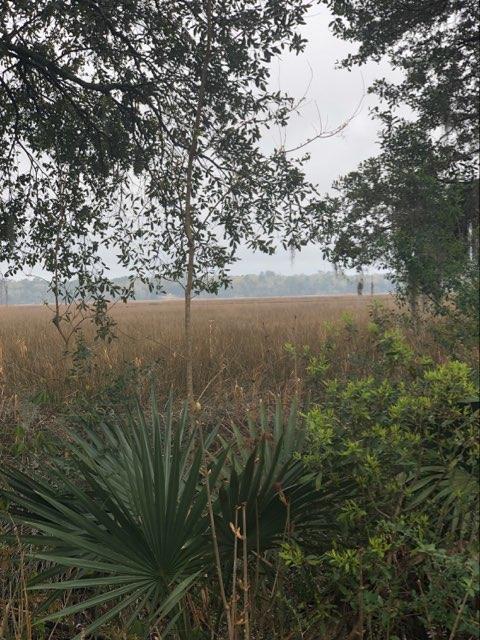 Indigo Fields Homes For Sale - 5584 Indigo Fields, North Charleston, SC - 8